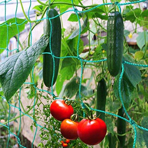 GardenGloss Premium Ranknetz mit großer...