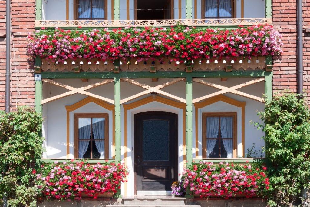 Balkonpflanzen am Haus