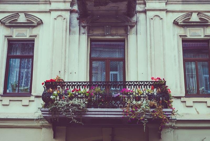 Balkon für Katzen Sicher gestalten