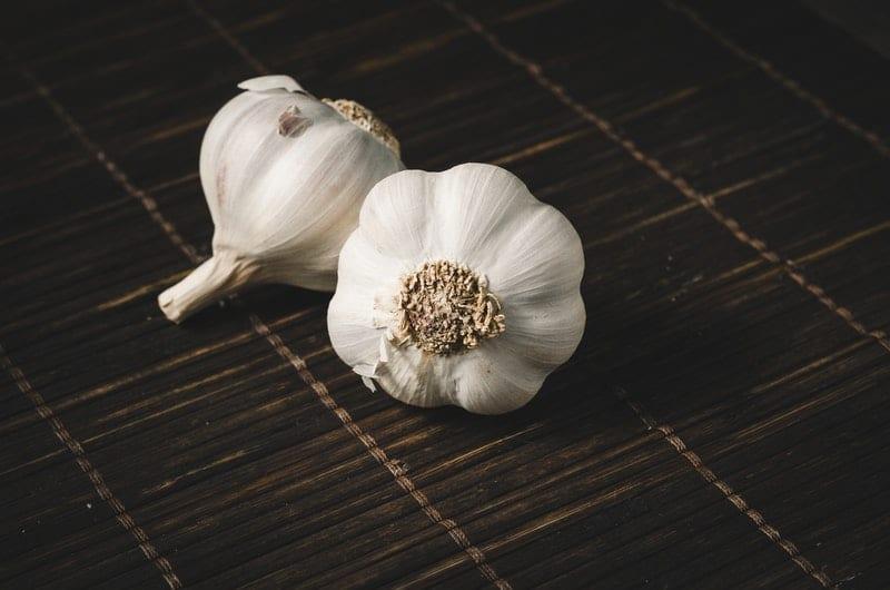 Knoblauch gegen Blattlaus