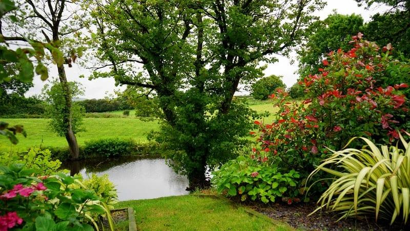 Vielfältiger Garten gegen Blattläuse