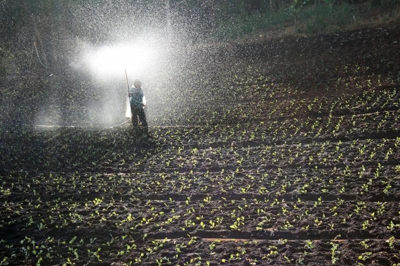 Rasensprenger für große Felder