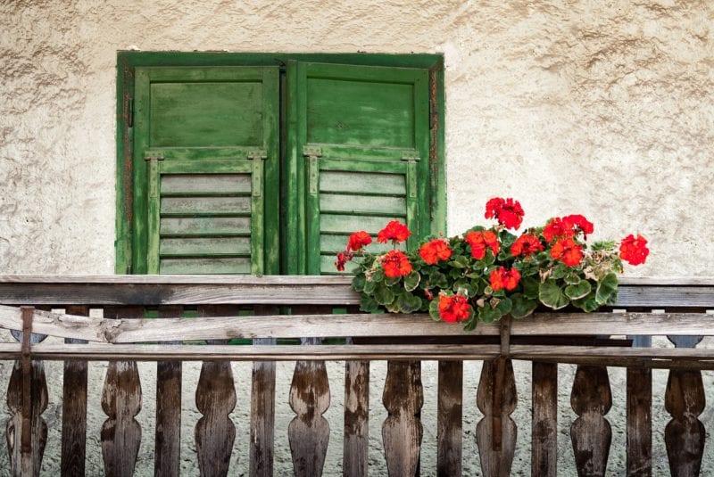 woher ameisen auf dem balkon kommen und wie sie diese. Black Bedroom Furniture Sets. Home Design Ideas