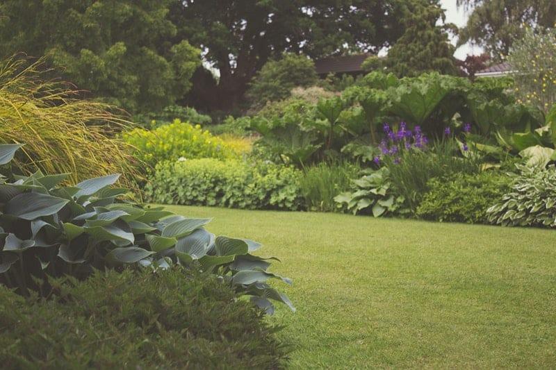 Handvertikutierer für kleine Gärten