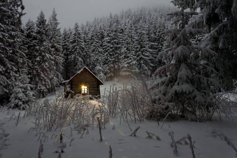 Marder Winter Spuren