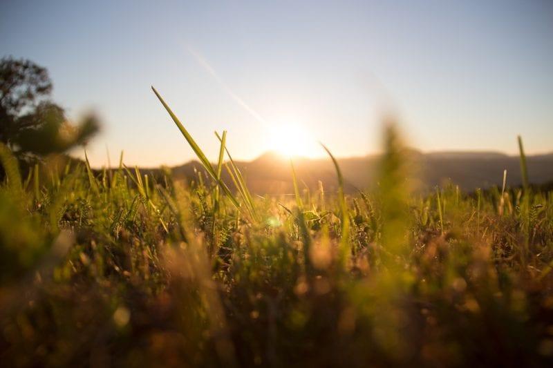 Rasen bei Sonne bewässern