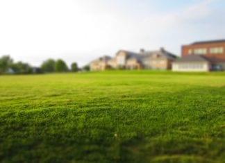 Rasen begradigen