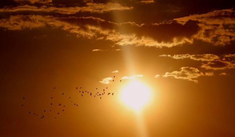 Solardusche - Sonne