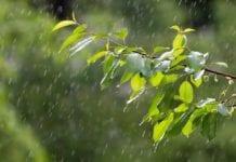 Regenmesser Edelstahl