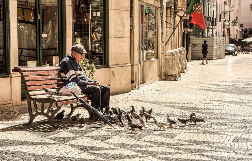 Tauben Füttern Großstadt