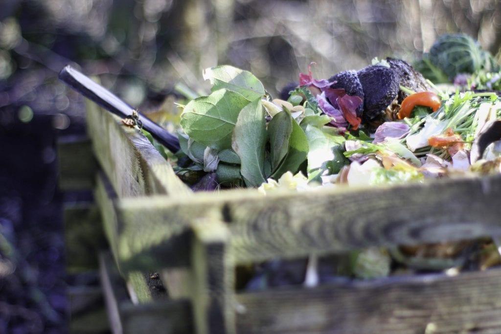 Kompost - Organische Abfälle