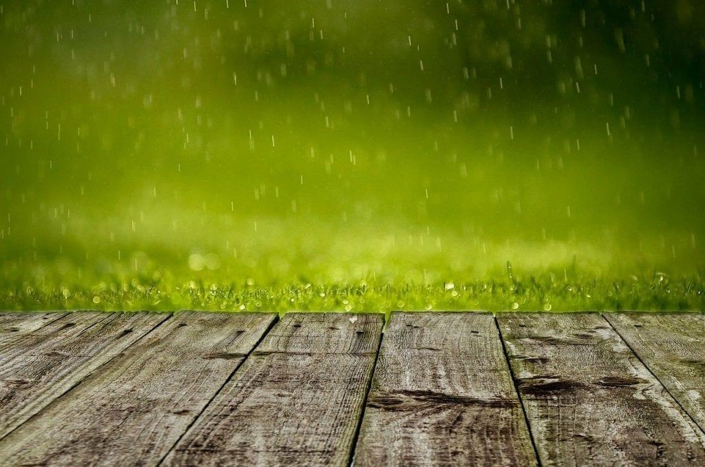 Regenwasser Umwelt