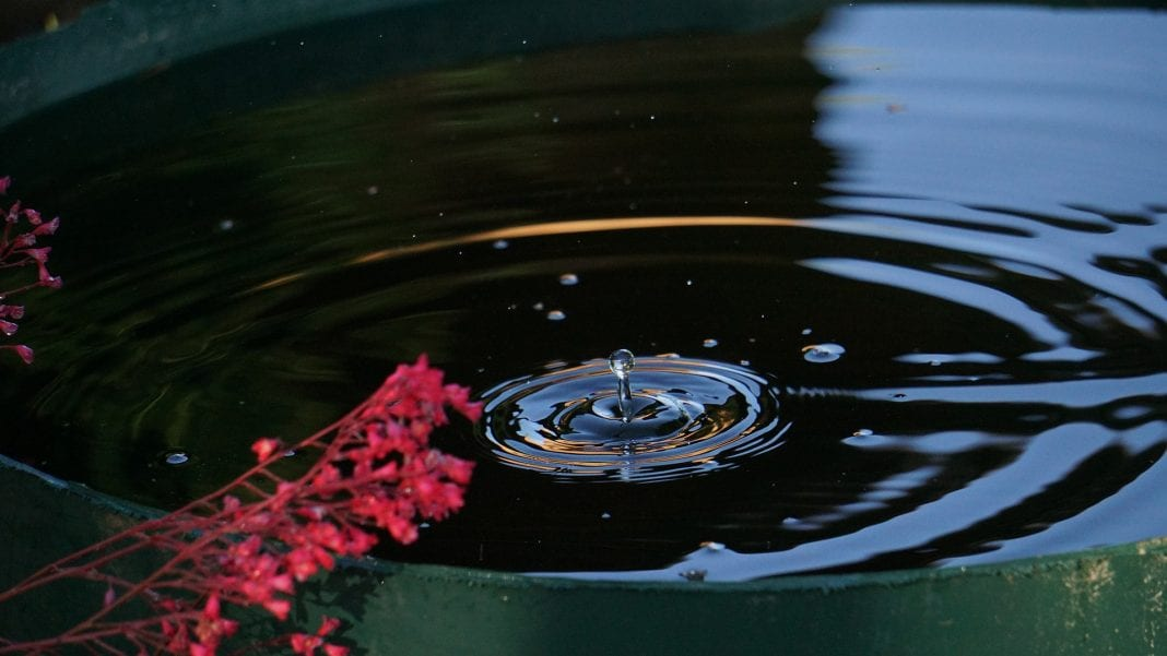 Wasser aus Regentonne pumpen