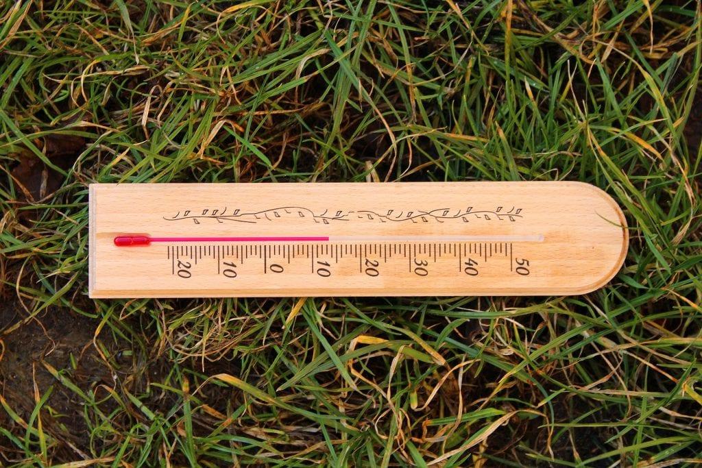 Herbstdünger - Temperatur